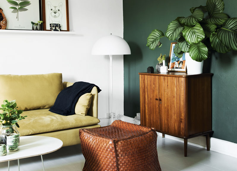 Color Crush: Olivgrün - Alles was du brauchst um dein Haus in ein ...